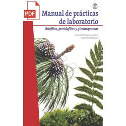 copy of Manual de prácticas...