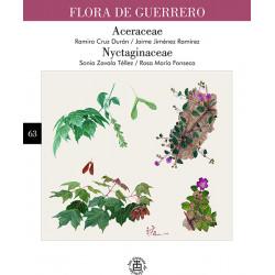 No. 63. Aceraceae /...