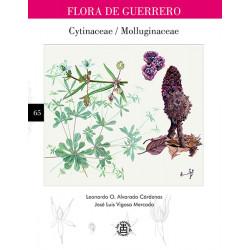 No. 65. Cytinaceae /...