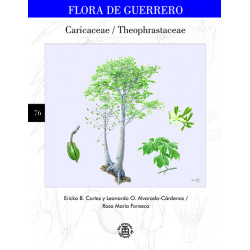 No. 76. Theophrastaceae,...