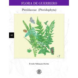 No. 82. Pteridaceae...