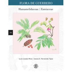 No. 84. Hamamelidaceae /...