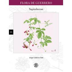 N° 85. Sapindaceae