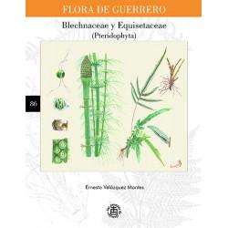 N° 86. Blechnaceae y...