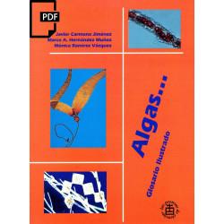 Algas… glosario ilustrado