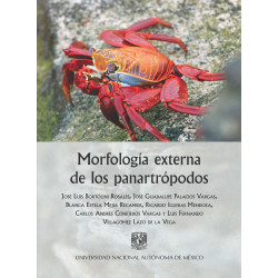 Morfología externa de los...